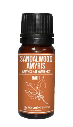 Sandalwood Amyris (West Indian Sandalwood)